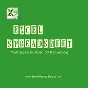 Excel Spreadsheet PL 100