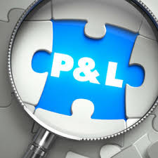 P&L Financial Statement