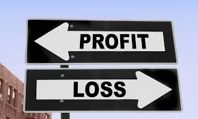 Profit and Loss Financial Statements