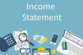 Profit and Loss Income Statement