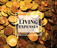 Living Expense Income Tax Deduction